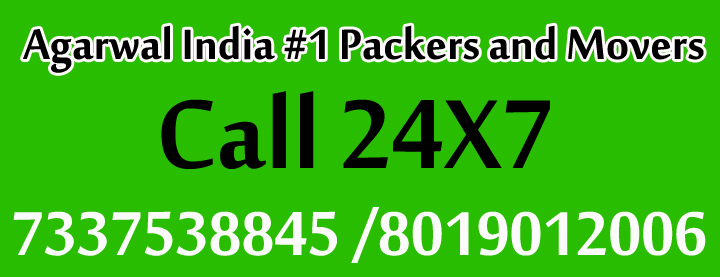 packers-movers300